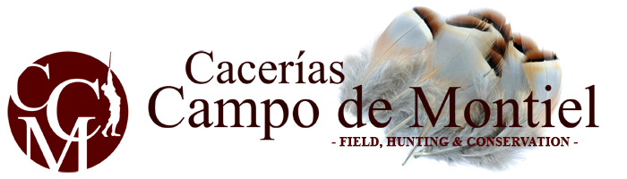 Partridge Shooting in Spain Logo
